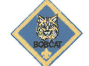 What is a Bobcat